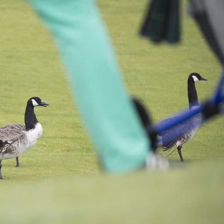 FBC Golfdag-161.JPG