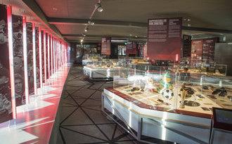 VIDEO: Feyenoord Museum opent haar deuren!